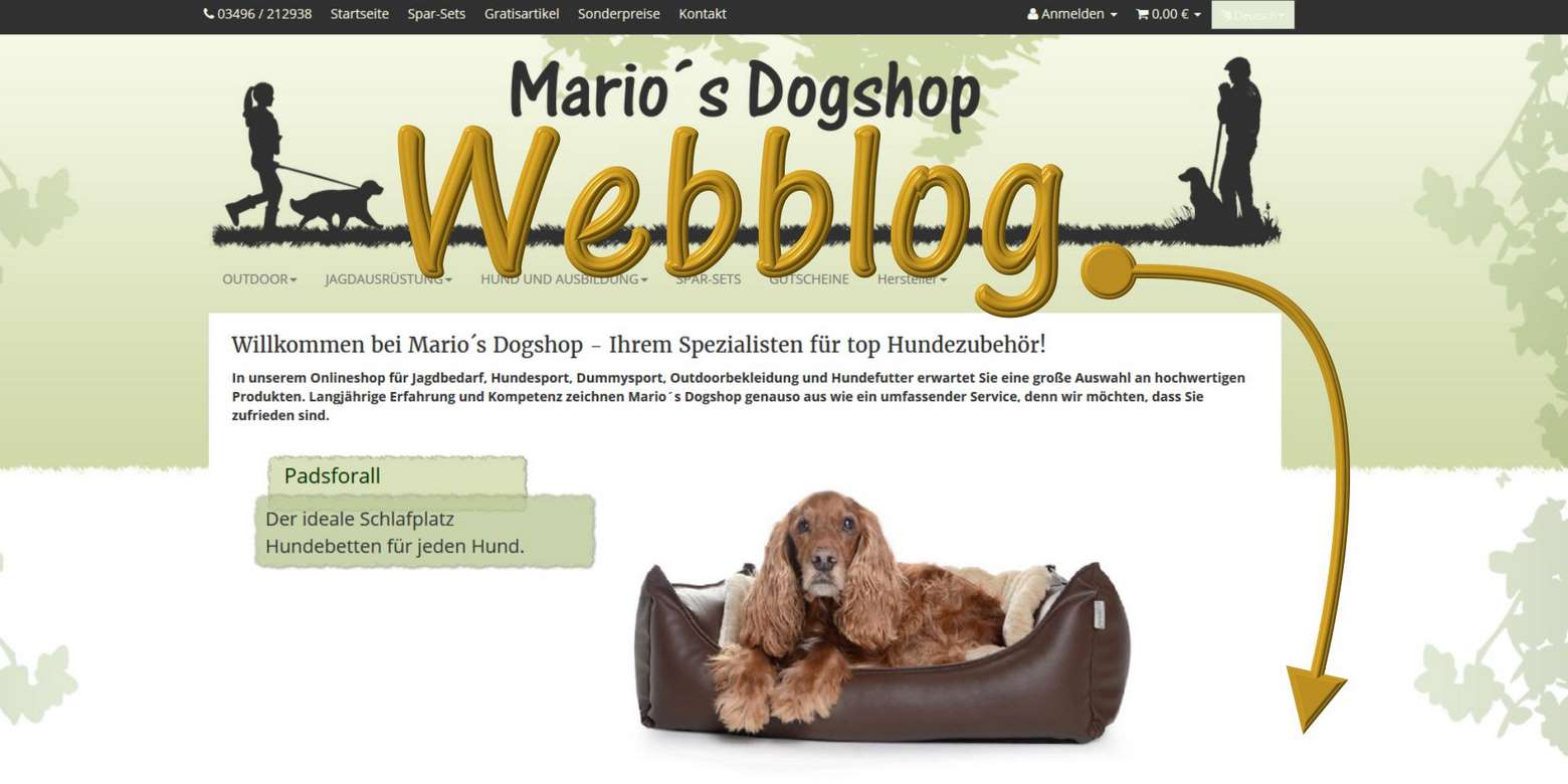Webblog online!!!