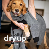 Dryup Body Zip Fit grau
